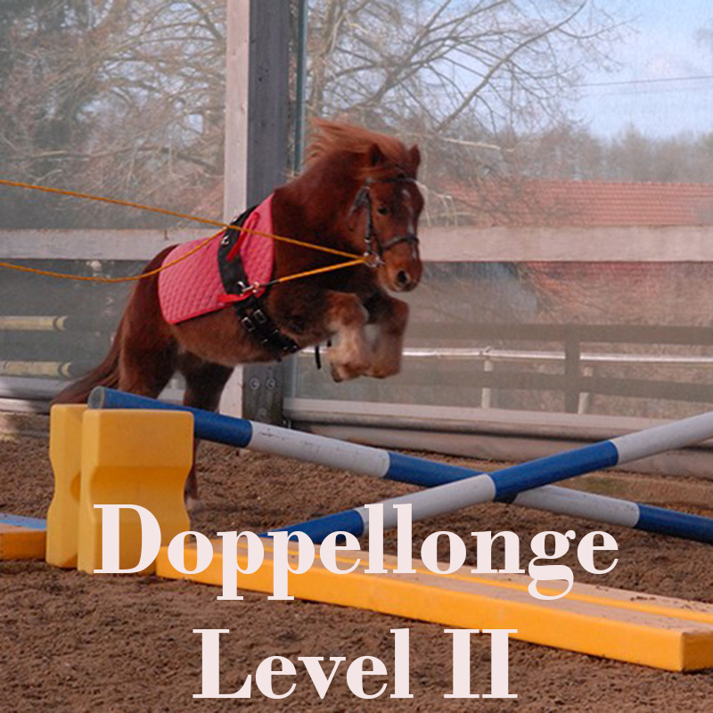 Doppelonge Level 2