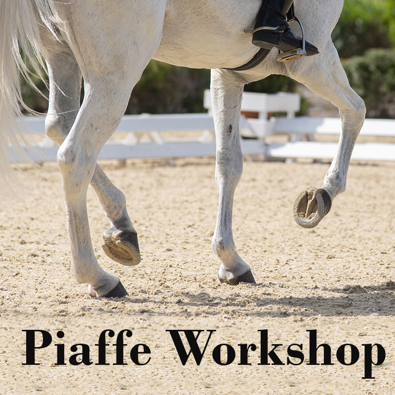 Piaffe Workshop